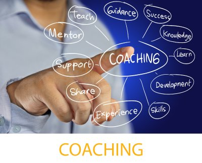 Nesso service coaching