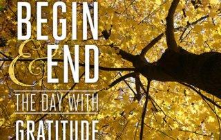 Gratitude-Tree with quote